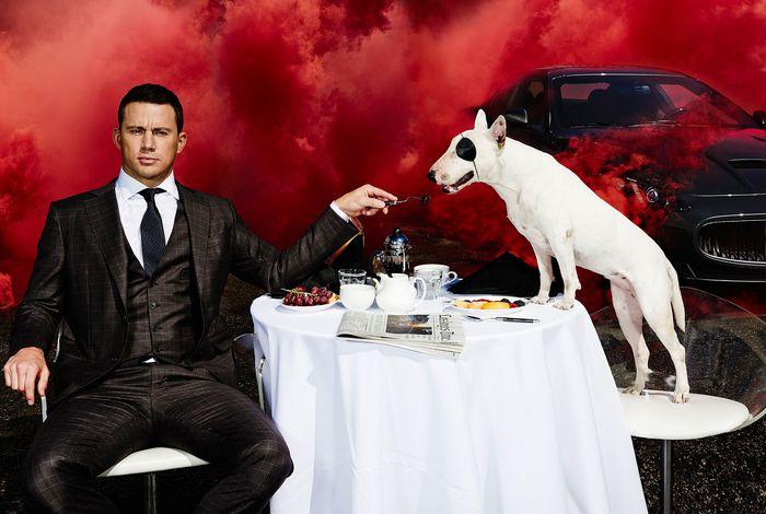 Кинокомпания Universal видит в Ченнинге Татуме будущего Ван Хельсинга